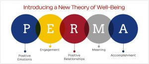 Theory of Well Being